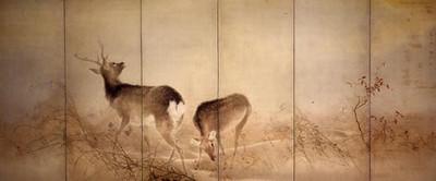 Konosimasigure