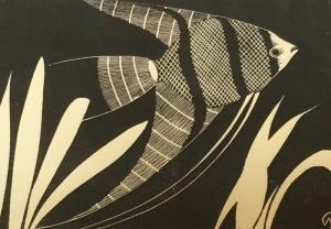 Mesquitafish